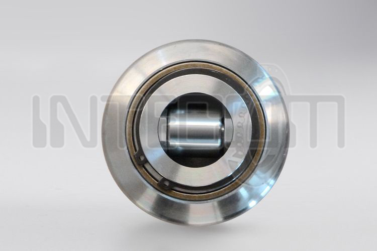 Combined bearings adjustable by screw